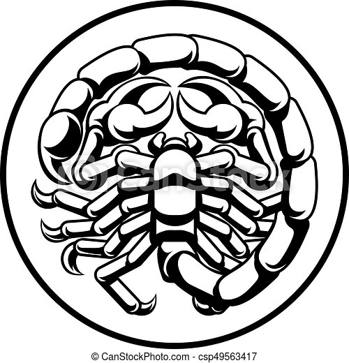 scorpio scorpion horoscope zodiac sign astrology zodiac vector rh canstockphoto com zodiac clip art free images zodiac clipart images