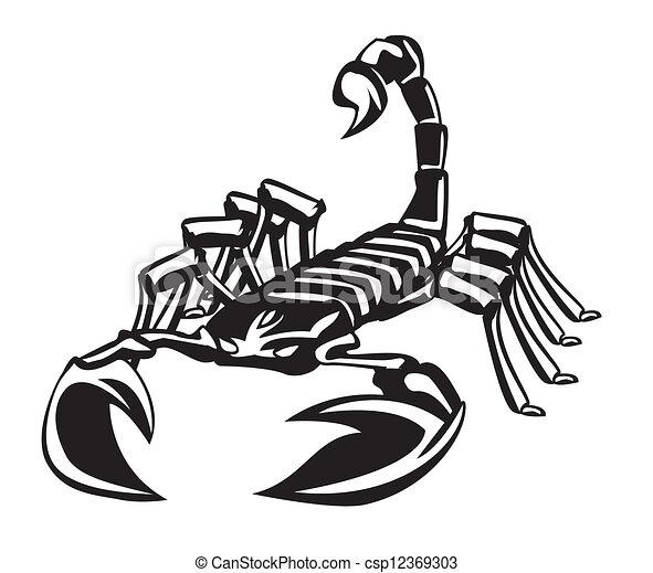 scorpion - csp12369303