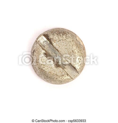 screw - csp5633933