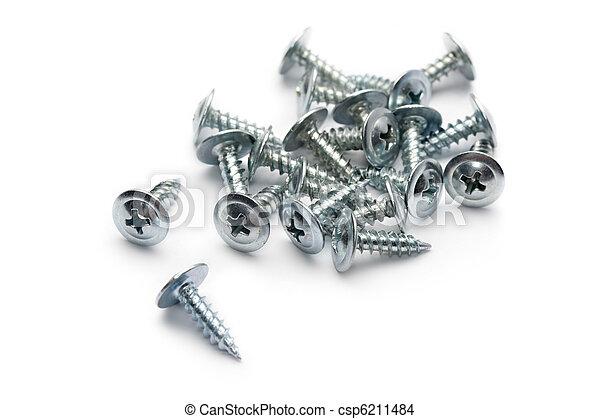 Screws isolated on white - csp6211484