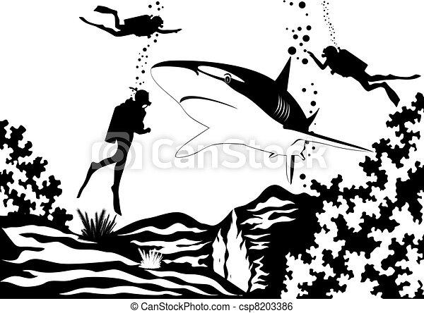 Scuba divers and shark - csp8203386