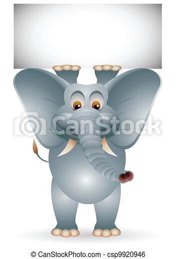 Elefante con signo en blanco - csp9920946