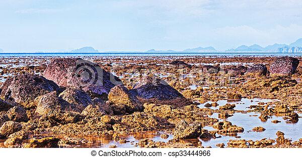Sea At Low Tide - csp33444966