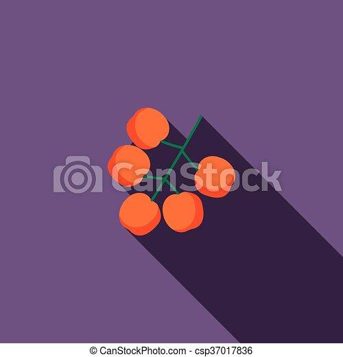 Sea buckthorn icon, flat style - csp37017836