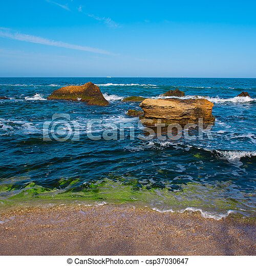 Sea coast and rocks - csp37030647