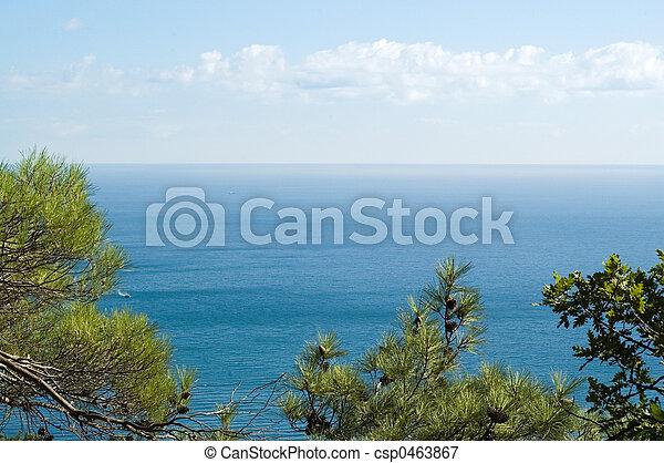 Sea coast - csp0463867