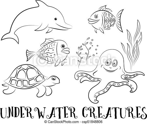 Sea Creatures Contours Sea Creatures Set Cartoon Dolphin Fish