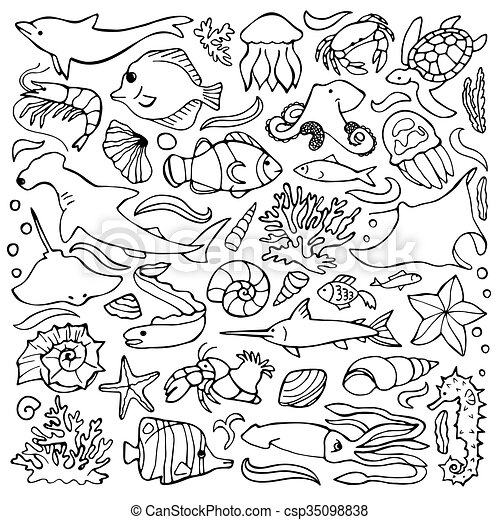 Sea Doodle Set Vector Illustration Of Sea And Ocean Hand Drawn