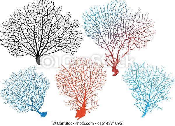 sea fan corals, vector set - csp14371095
