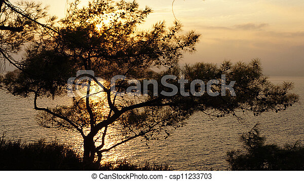 sea landscape - csp11233703