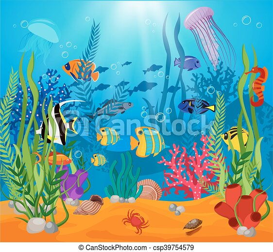 Sea Life Animals Plants Composition - csp39754579