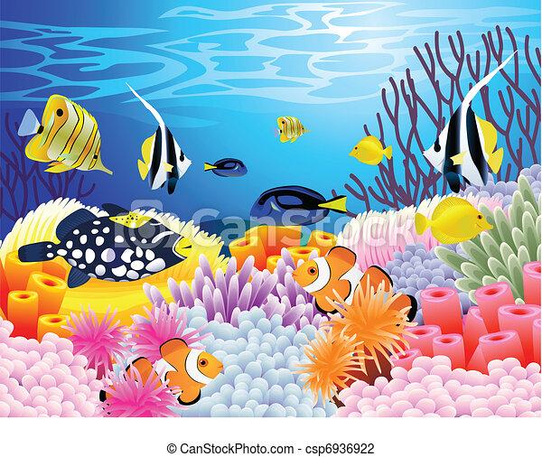 Sea life background - csp6936922