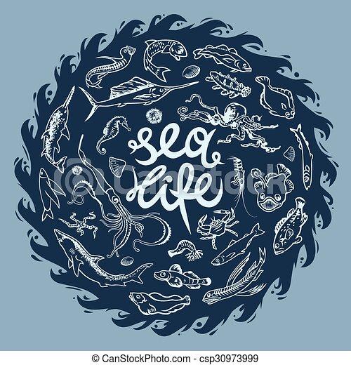 Sea life - csp30973999