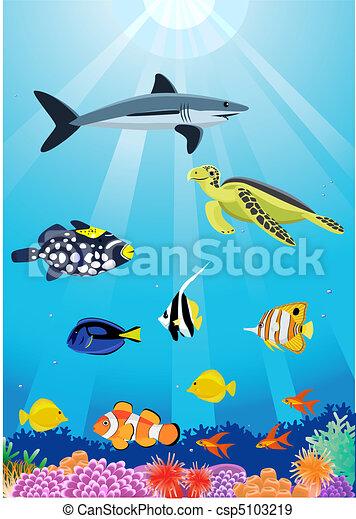 sea life - csp5103219