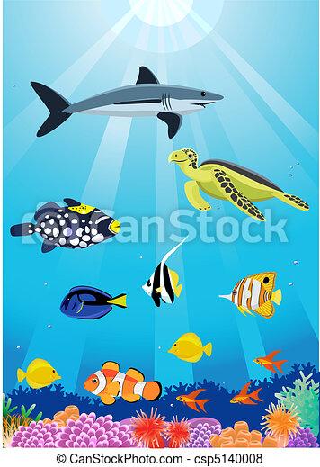 Sea life - csp5140008