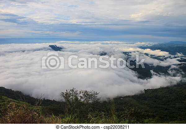 sea of fog with forests as foreground - csp22038211