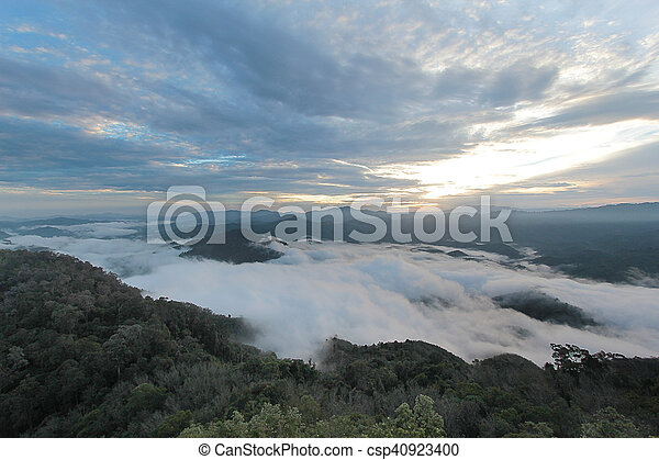 sea of mist in the morning time - csp40923400