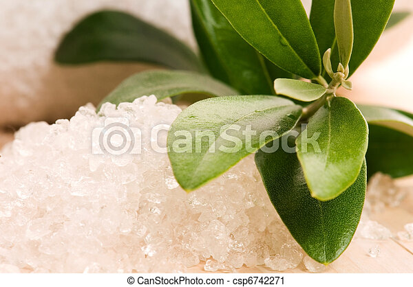 Sea Salt With Fresh Olive Branch. Spa And Wellness  - csp6742271
