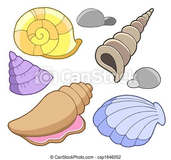 sea shells collection isolated illustration clip art search rh canstockphoto com shell clipart for 1st birthday shell clip art images