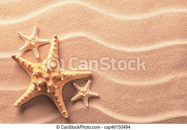 Sea star fish on an idylic tropical beach - csp46150494
