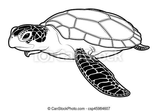 sea turtle animal cartoon on white background sea turtle vector rh canstockphoto com sea turtle shell vector sea turtle vector free