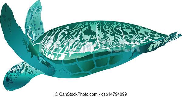 Sea Turtle - csp14794099