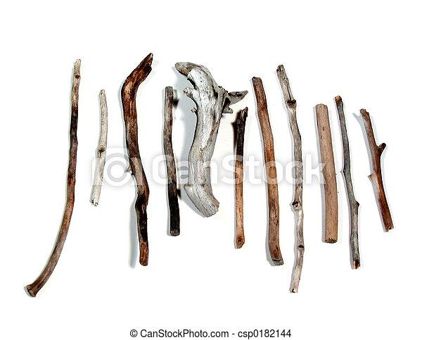 Sea twigs - csp0182144
