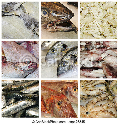 seafood collage - csp4768451