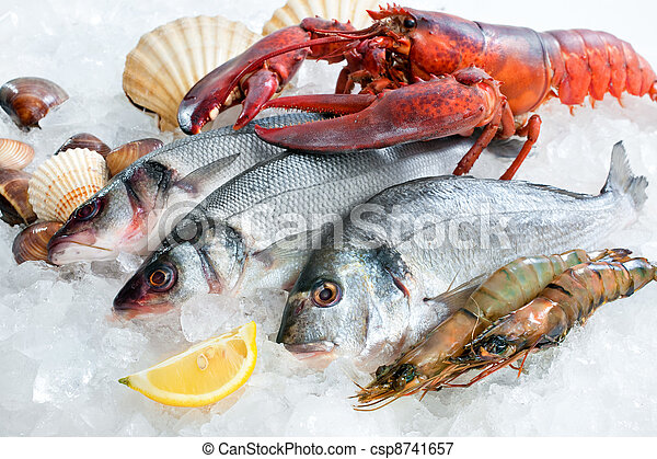 Seafood on ice - csp8741657