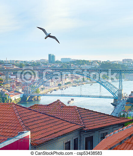 Seagull flying over Porto, Portugal - csp53438583