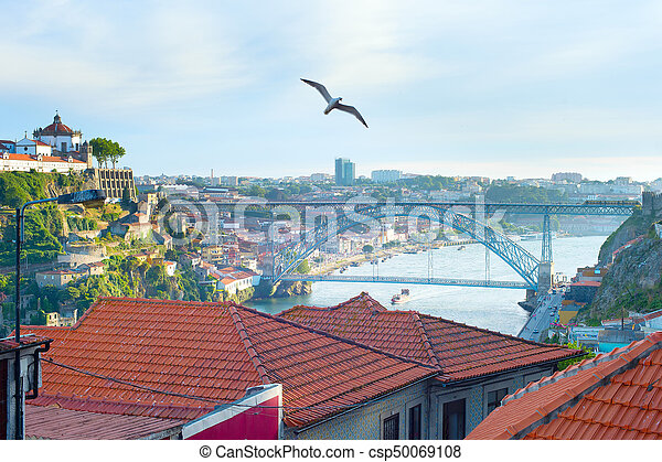 Seagull flying over Porto, Portugal - csp50069108