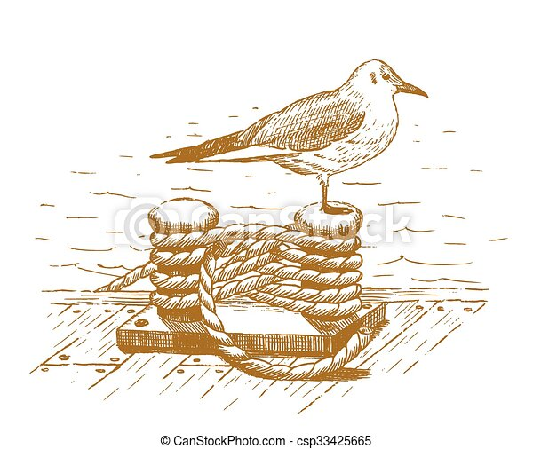 Seagull sitting on a bollard drawn - csp33425665