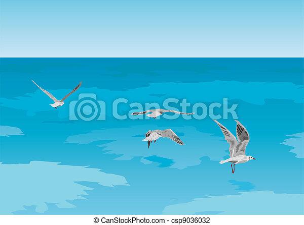 Seagulls on the sea - csp9036032