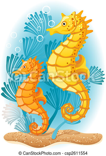Seahorse - csp2611554