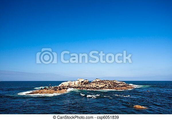 Seal Island Mossel Bay - csp6051839