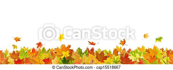 Seamless autumn leaves - csp15518667