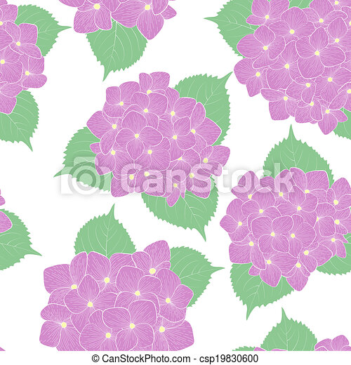 seamless background with flower hydrangea . - csp19830600
