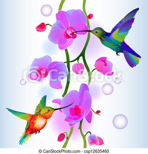 Seamless background with orchids and humming-birds - csp12635460