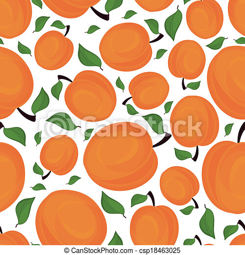 Seamless pattern of apricots, vector illustration. - csp18463025