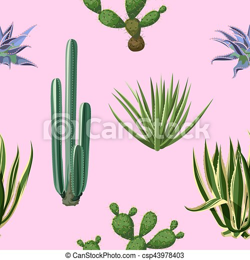 Seamless pattern with cactuses and succulents set. Plants of desert - csp43978403