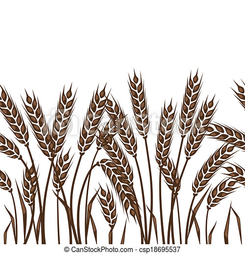 Seamless pattern with ears of wheat. - csp18695537