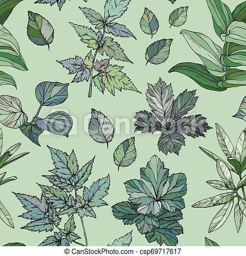 Seamless pattern with green leaves - csp69717617