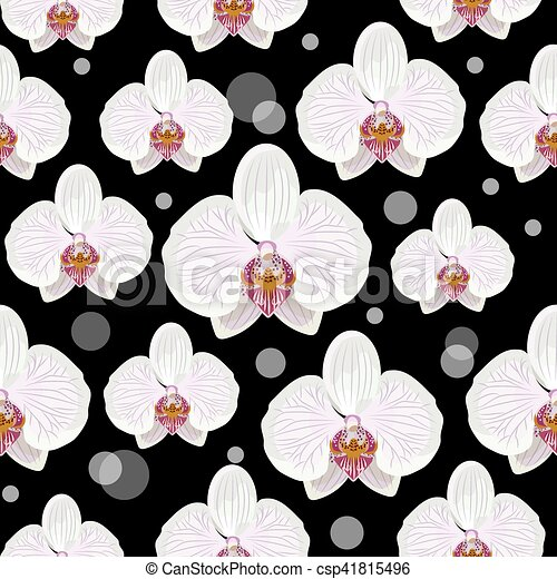 Seamless pattern with orchid flowers - csp41815496