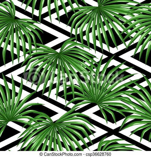 Seamless Pattern With Palms Leaves Decorative Image Tropical Leaf Of Palm Tree Livistona Rotundifolia Background Made Canstock 31 png files 300 dpi with transparent background. can stock photo