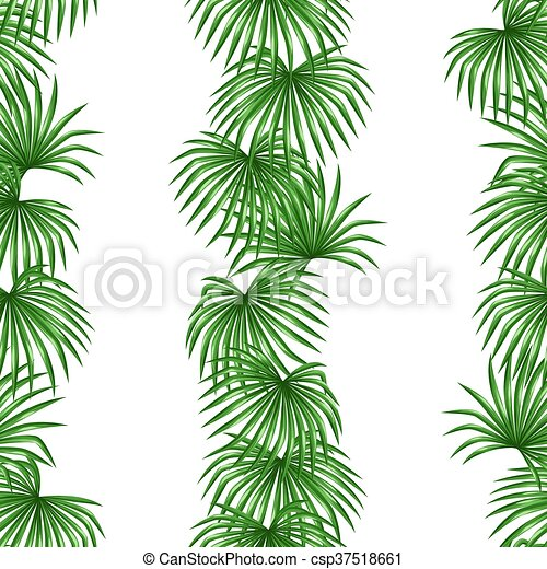 Seamless Pattern With Palms Leaves Decorative Image Tropical Leaf Of Palm Tree Livistona Rotundifolia Background Made Canstock This short post includes a little story on the tropical leaf and a quick video of. can stock photo