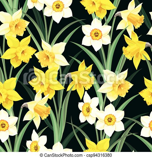 Seamless pattern with yellow and white daffodil - csp94316380