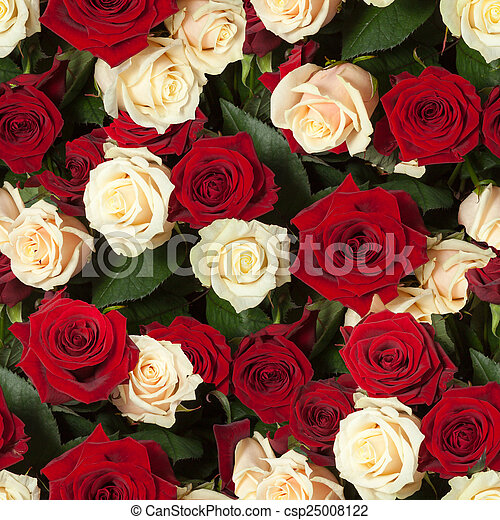 seamless roses background - csp25008122