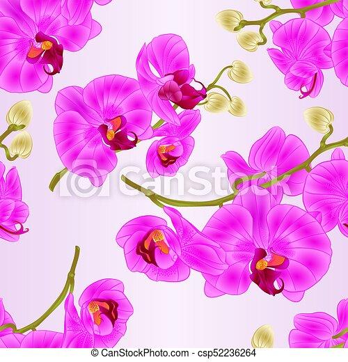 Seamless texture branch orchids flowers purple phalaenopsis clip seamless texture branch orchids flowers purple phalaenopsis tropical plant stem vectoreps mightylinksfo