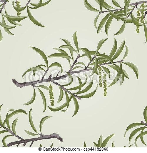 Seamless texture Willow branch with catkins vector.eps - csp44182340