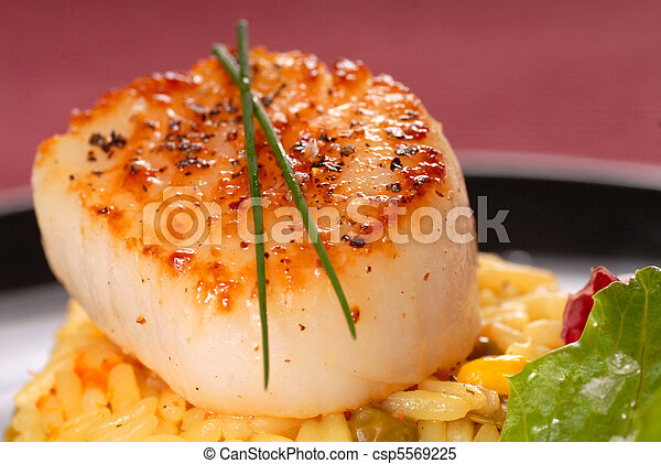 Seared scallop on a bed of saffron rice - csp5569225